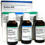 Detox Kit